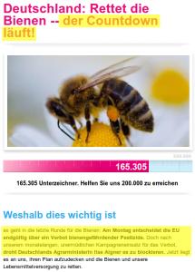 Bienenkampagne 2013
